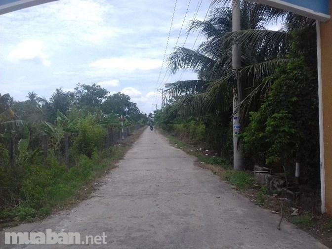 Cần bán 1 lô đất nền - hẻm Nguyễn Thị Thập - phường 5, Mỹ Tho - 230tr