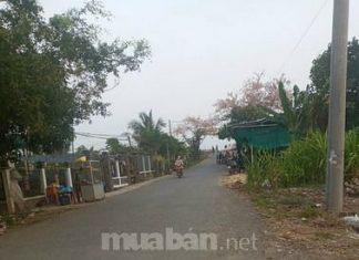 Bán miếng đất mặt tiền tỉnh lộ 861 tại Mỹ Trung, Cái Bè, Tiền Giang