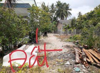 Bán 2 công đất gần sát TP Mỹ Tho Tiền Giang siêu rẻ. Chỉ 740 triệu
