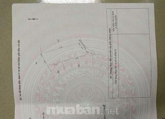 Bán Đất Bình Hưng- Thành Công- 250m2 Lên Thổ 100m2 đường 2,5m